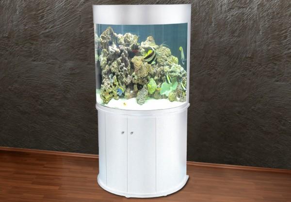 kurze Lieferzeit ca 1-2 Wochen weißes halbrundes Glasaquarium Aquarienkombination 90cm
