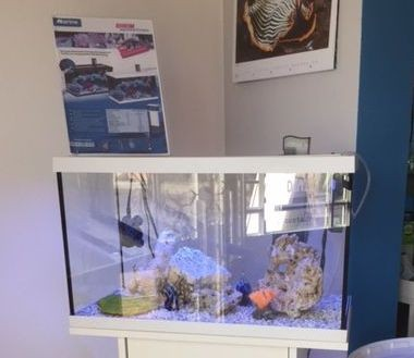 Eheim Aquastar 63 Marin Aquarium 2 x 12 W LED weiß