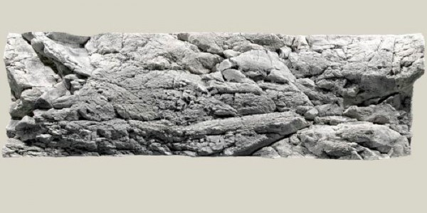 Back to Nature Malawi Rückwand 200x 60cm