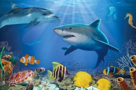 3D Platzmatte Seaworld