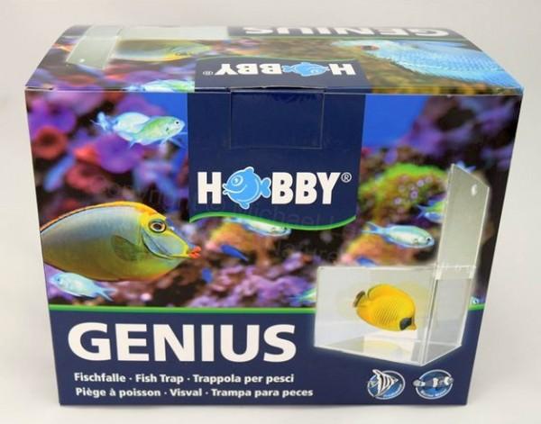 Hobby Genius Fischfalle