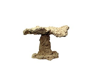 Riffkeramik Riffpilz 40cm