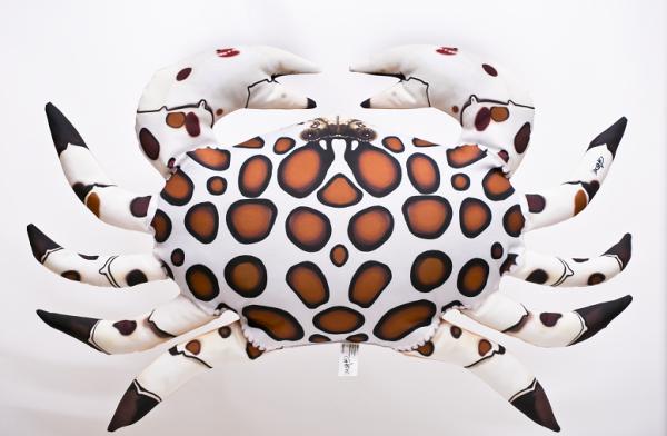 Harlekinkrabbe Krebs - Kissen ca. 60 cm