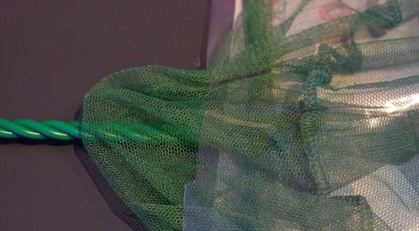 Fischfangnetz / Kescher 10 cm, grün grob