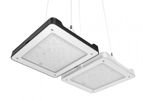 LED Philips coralcare Meerwasser Beleuchtung in schwarz black Version neu ab 2020