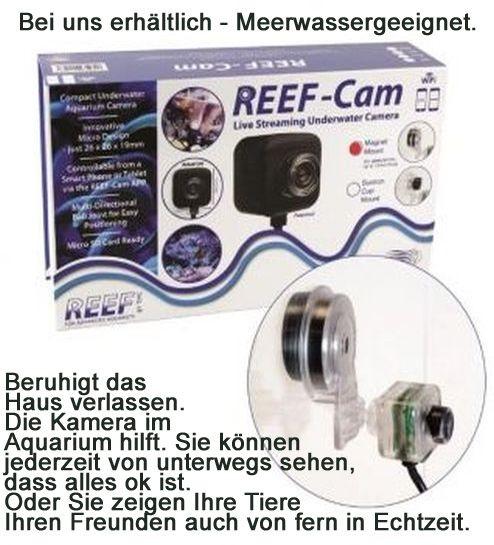 Reef-Cam Aquarien-Unterwasserkamera