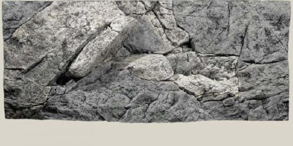 Back to Nature Rocky Rückwand 120 x 50cm
